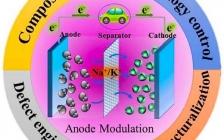 东北大学Energy Storage Mater.:钠/钾离子电池磷复合负极的研究进展