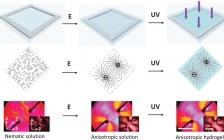 浙大Adv. Mater.:制备具有精细有序结构和程序化变形的水凝胶