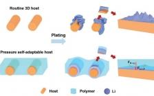 清华张强团队 Adv. Funct. Mater.:自适应压力调控复合负极的Li沉积/溶解,助力高效LIBs