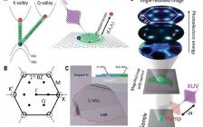 最新Science:探测半导体中的暗激子