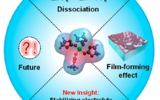 中科院长春应化所明军ACS Energy Lett.:揭示碳酸乙烯酯溶剂化壳在可充电金属离子电池中的新作用