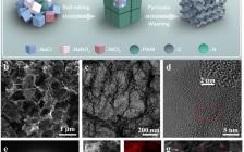 朱英&戴黎明Nano Energy:M-SA/NC的通用多米诺策略制备及NiN4 构型中N 2s 电子对催化CO2电还原中的重要影响