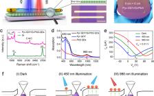 天津理工大学&北京大学ACS Nano:一种可大规模制备的柔性全光调控突触器件