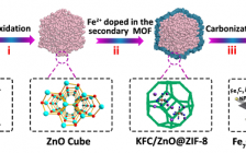 Carbon:揭示Fe7C3纳米颗粒与原位生长的碳纳米管在碱性燃料电池的协同ORR作用
