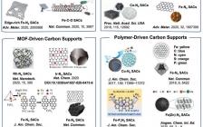 李亚栋院士/王定胜教授 Small综述:碳负载单原子催化剂用于甲酸氧化和ORR