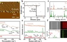 武汉理工麦立强团队Nano Energy:利用片上微型器件揭示磷掺杂Co3O4的表面P-O基团在电催化析氧反应中的作用
