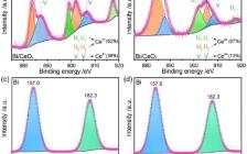 吉大鄢俊敏、蒋青团队Angew. Chem.:通过Bi/CeOx促进CO2电还原高效生产甲酸