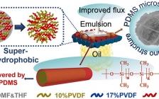 哈工大邵路 ACS Nano:超高渗透系数和分离效率!可规模化超疏水膜实现超快速水-油分离