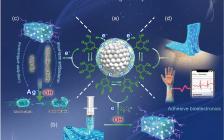 西南交大鲁雄/谢超鸣团队:仿贻贝纳米酶用于构建多功能水凝胶生物电子