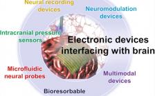 Nano Research:材料科学在脑机接口领域的应用