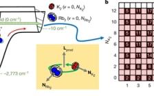哈佛大学最新Nature:超冷化学的统计动力学精确测试