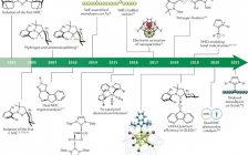 Nature Reviews Chemistry:N-杂环卡宾的化学及应用研究进展