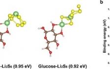 【已校稿】蒙纳士大学Nat. Commun.:可用于有效调节Li-S电池中多硫化物的糖基粘合剂