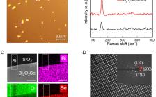 浙江大学林宏焘团队、西湖大学李兰团队ACS Nano:片上集成型Bi2O2Se光电探测器