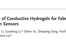 齐鲁工业大学刘温霞教授和济南大学刘宏教授Small综述:柔性应变传感器用导电水凝胶的研究进展